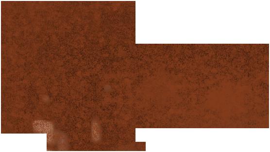Simone Medeiros